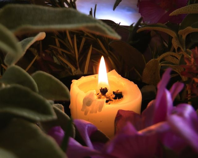 Flower herb and candle sacred 320